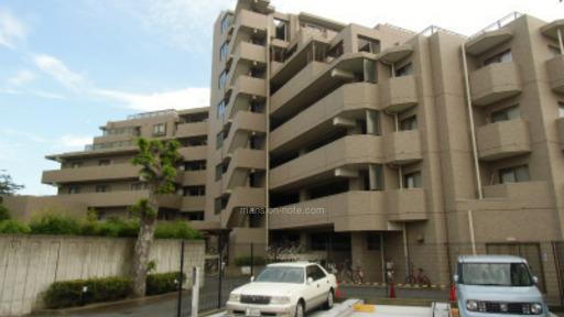 まな動物病院|神奈川県藤沢市本鵠沼5-4-18 のトリミングサロン|トリムトリム
